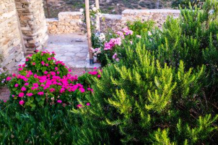 ibaritakis_loukoum_garden_may17-0555